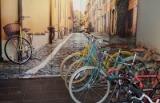 Vino Velo Bike Wine Tours & Bike Rentals Reviews