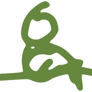 Yoganovisen